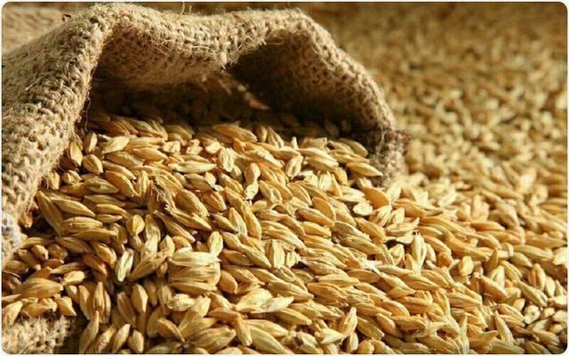 كم نصاب الحبوب والثمار