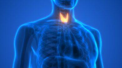 المادة الكيميائية التي تفرزها الغدد الصماء