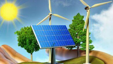 تستعمل المنتجات طاقة الشمس لصنع
