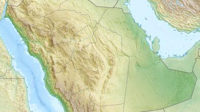 حدد كم يبلغ طول سواحل المملكة على الخليج العربي والبحر الاحمر