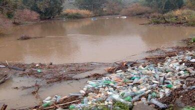 ما الوسائل المتبعة للحد من مشكلة التلوث البيئي؟