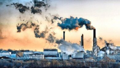 اذكر اثنين من اضرار تلوث الهواء على الانسان