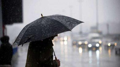 عدد أنواع المطر التي ذكرت في النص هي
