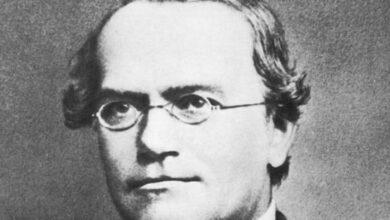 من هو مؤسس علم الوراثة