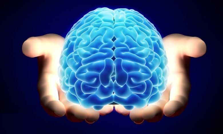 الفرق بين نصفي الدماغ الأيمن والأيسر بوصف طريقة التفكير الخاصة بالنصف الأيسر على أنها مركزة وواضحة، بينما تكون طريقة التفكير الخاصة بالنصف الأيمن عائمة وواسعة