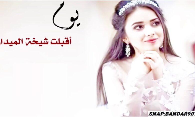 كلمات شيلة شيخة الميدان