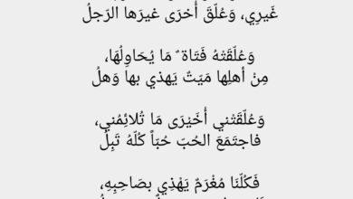 اللي يبينا عيت النفس تبغيه كلمات