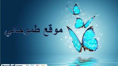 في الوطن العربي هو الاقليم