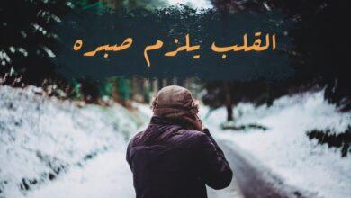 كلمات شيلة القلب يلزم صبره