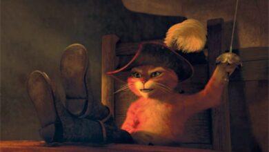 هذه القطه الشرسه مثلت في دور اساسي في فيلم