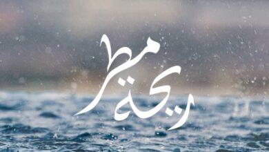 كلمات اغنية ريحه مطر