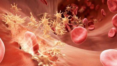 ما اسم الغدد والخلايا التي تقوم بتنقية الدم وتطهيره
